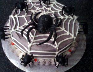 Spider Web #59